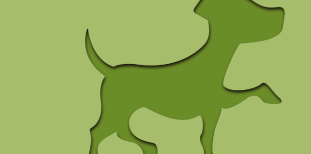 cachorro-verde
