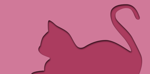 gato-rosa